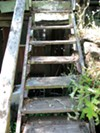The wooden deck surrounding the house and the steps leading up to it felt as if they were ready to collapse.