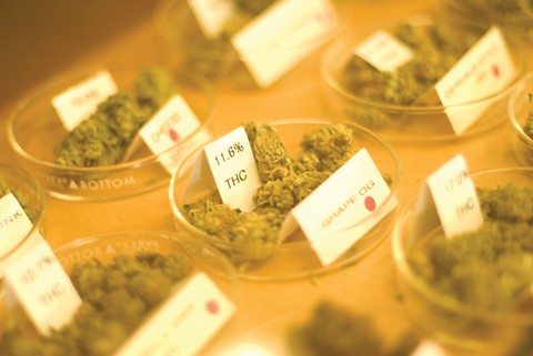 Many dispensaries will be selling scientifically tested legal pot. - FILE PHOTO BY CRAIG MERRILL