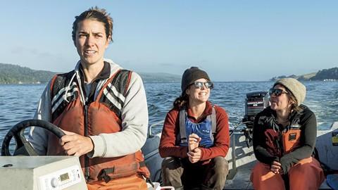 Salt Point Seaweed's three women founders. - PHOTO BY SHAUN WOLFE