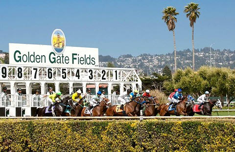 Hall of Fame thoroughbred trainer Jerry Hollendorfer was banned by the owners of Golden Gate Fields and Santa Anita racetrack in Southern California after a fourth of his horses was euthanized after a race. - GOLDEN GATE FIELDS