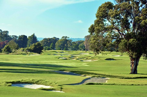 Under the county's revised shelter in place order golf enthusiast can return to local links like Chuck Corica Park in Alameda. - CHUCK CORICA PARK