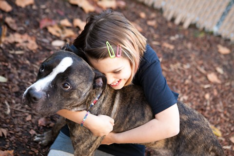 PALS East Bay is helping find a new home for Quinn, pictured here with 