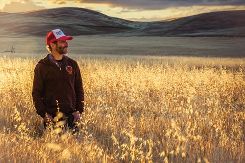 Ron Silberstein at Hayes Farm, one of the Northern California farms that sells malts to Admiral Maltings. - ERIC WOLFINGER