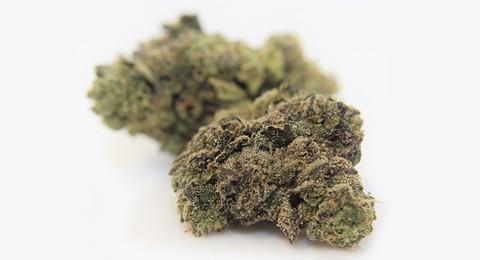 7-12_cannabis_review.jpg