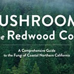 On Mycophiles Noah Siegel and Christian Schwarz's New Mushroom Field Guide for the Redwood Coast