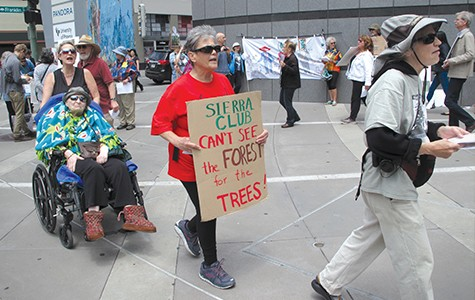 Environmentalists protest eucalyptus-tree removal outside Sierra Club in Oakland last month.