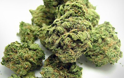mg_legalize_3841.jpg
