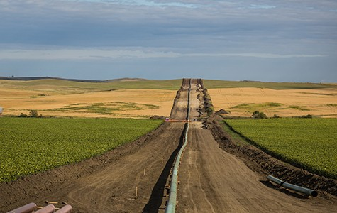 Dakota Access Pipeline.