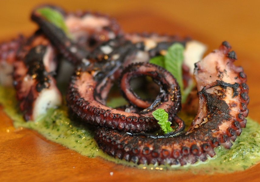 An octopus dish from the popup incarnation of Salsipuedes. - JAY PORTER