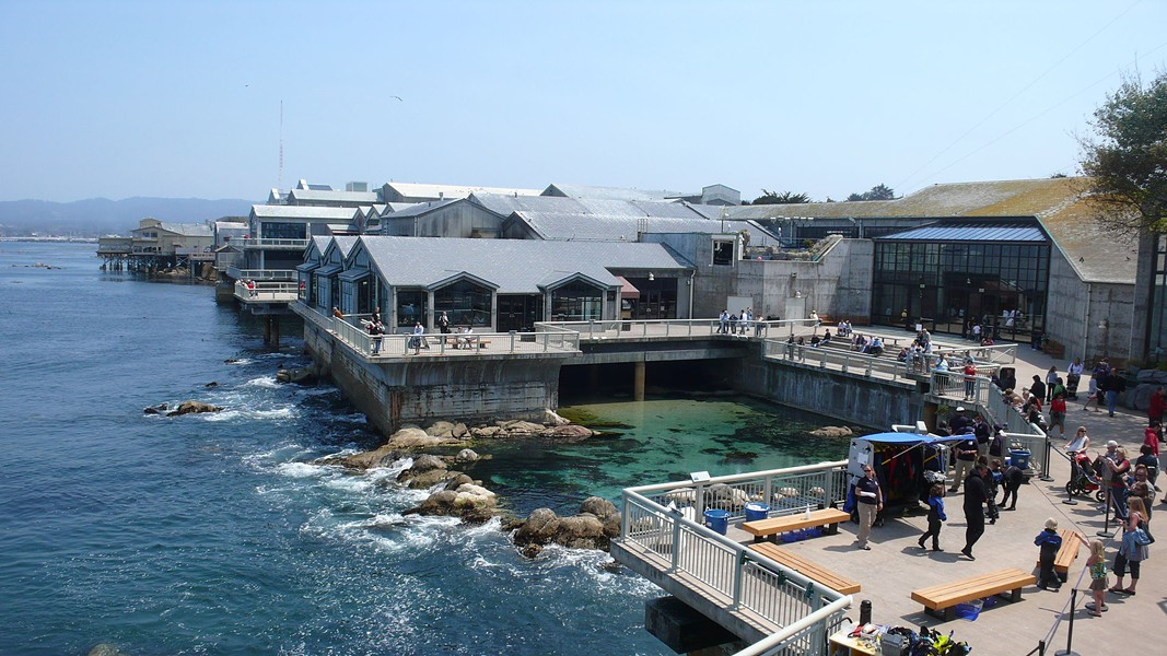 Monterey Bay Aquarium is a must-see.