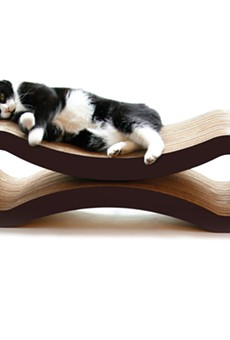 SCRATCH HIT: Pet Fusion's groovy pad will wow your feline friend.