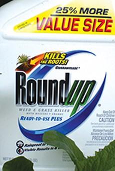 Evidence Mounts that Roundup Is Toxic