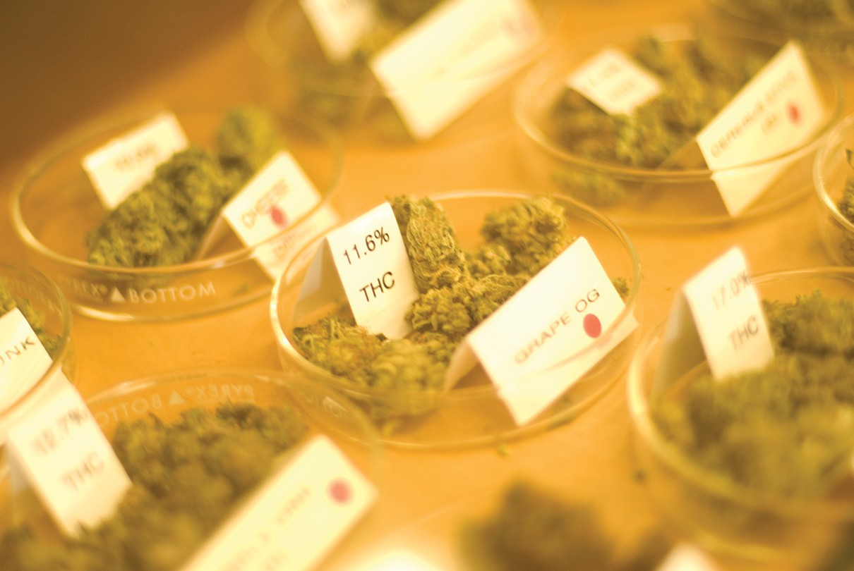 Where to Buy Legal Weed in the East Bay on Jan  1 | East Bay