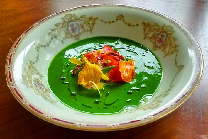 Nasturtium and burrata soup. - JOURNEYMEN