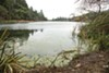 There is evidence that the repeated closures of Lake Temescal in recent years were caused, at least in part, by nearby spills from city of Oakland sewer pipes.