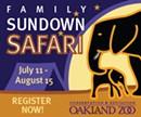 Family Sundown Safari