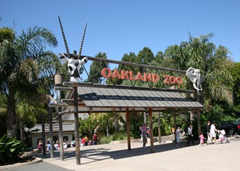 Wednesday's Briefing: Oakland Zoo is at risk of closing due to covid-19, executive says; Berkeley cuts police budget
