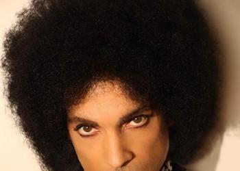 Purple Reign Prince Tribute