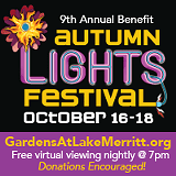 Autumn Lights Festival - Uploaded by Samee Roberts