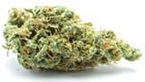 legalize-3260e3f4b801f3a7.jpg
