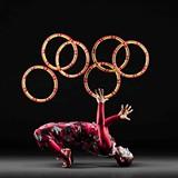 4efebcb1_rings2_cirquedelasymphonie_sm.jpg