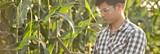 b73fa8f3_lead-image-scientist-farm.jpeg
