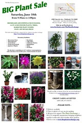 b60218e2_plantsalejune102017.jpg