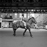 Vivian Maier's photos had a social conscience that favored the poor and marginalized.