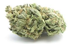 A flower bud of the strain Blueberry Headband -- a favorite in Washington. - DAVID DOWNS