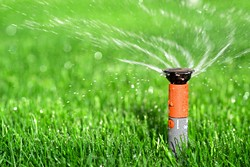 watering_lawn.jpg