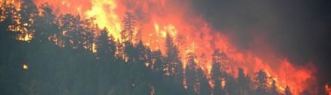 western_fires1.jpg
