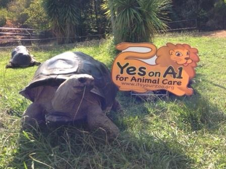 Zoo operators illegally posted campaign signs on public property.