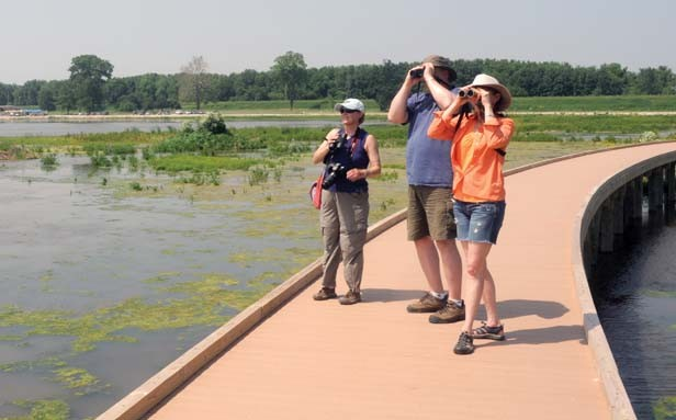 Visitors pause on the boardwalk to search for one of the 212 bird species that have been documented at the preserve since the water's return. - PHOTO BY THOMAS HANDY