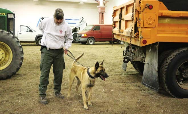 Springfield patrol officer Dave Pletsch prepares for a training search with his dog, Utah, in a building on the Illinois State Fair Grounds. - PHOTO BY PATRICK YEAGLE