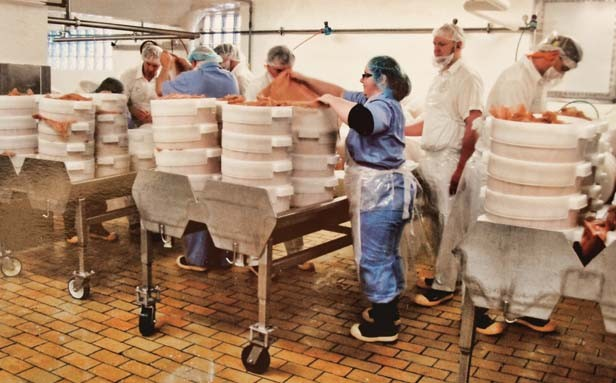 Reel makes cheese in Wisconsin during a training sponsored by Schnucks. - PHOTO COURTESY LEAH REEL