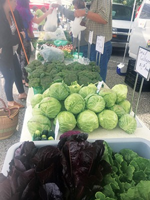 Gregory Orchard's cruciferous display