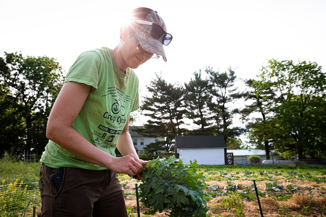 Hannah Tomlin works on her farm in Pleasant Plains. - RICH SAAL