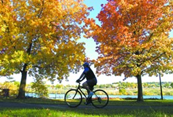 Framed by the turning leaves a bicyclist enjoys the views along the Snake River. Riverfest, will celebrate both rivers and cycling in the valley. - TRIBUNE/KYLE MILLS