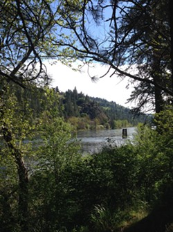 A 2015 scenic morning puke stop along the Clearwater River resulted in stunning river views like this one