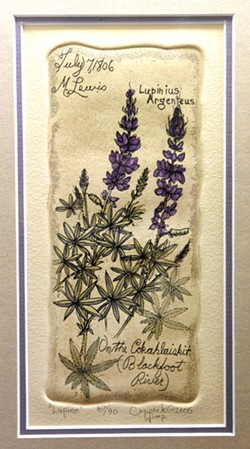 Lupine by Barb Coppock, like Lewis & Clark would have found it.