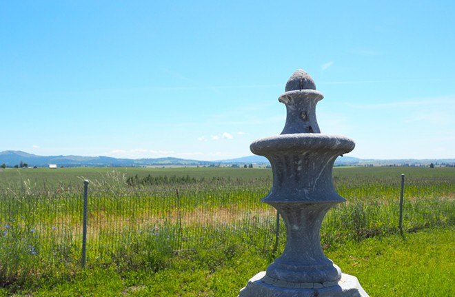 A view from Wild Rose Cemetery near Kendrick. Tara Roberts/for Inland 360 - TARA ROBERTS/INLAND 360