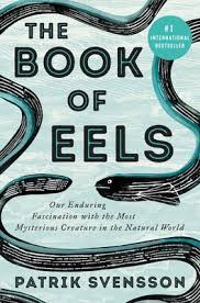 the-book-of-eels.jpeg