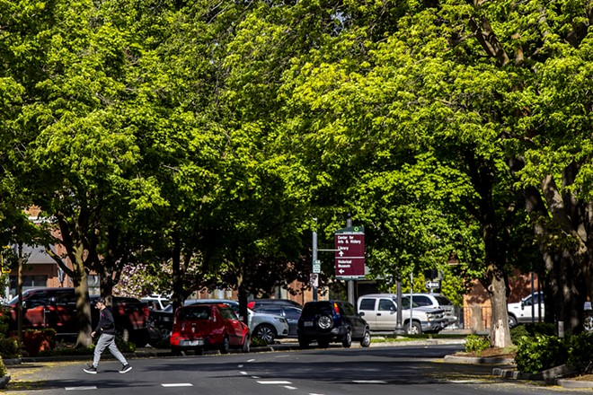 A person crosses Main Street in Lewiston under a canopy of trees on Thursday. - AUGUST FRANK/360