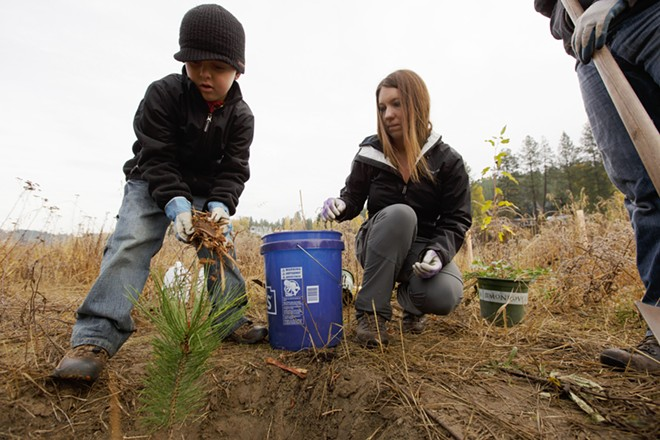 7 year old Logan Smith, left, adds mulch to a freshly planted ponderosa pine as his mother Amy, center, and father Channing watch. - YOUNG KWAK