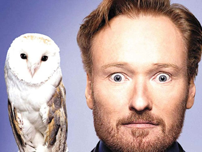 A) There is no owl in this show. B) There should be.