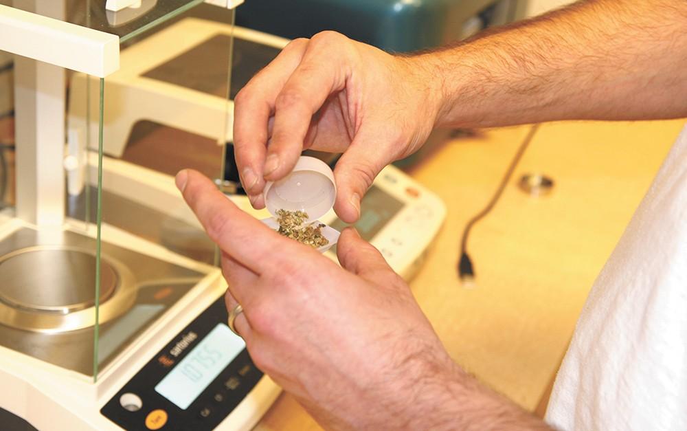 Aaron Stancik, the scientific director of the Pullman location of CannaSafe Analytics, prepares marijuana samples for testing. - JACOB RUMMEL