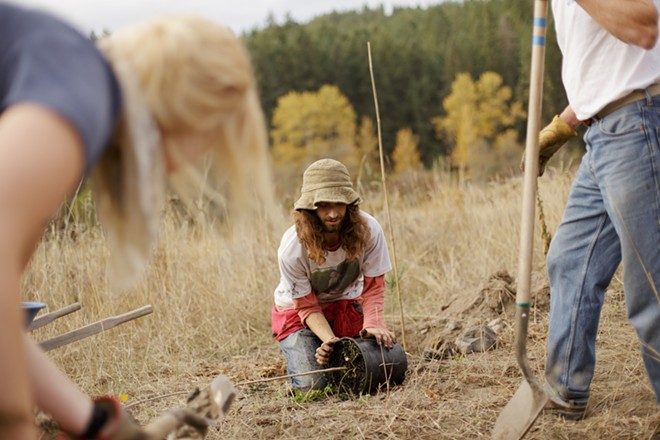 Ben Covino, center, removes a quaking aspen from a container as Carrie Herrman, left, and John Ford dig a hole. - YOUNG KWAK