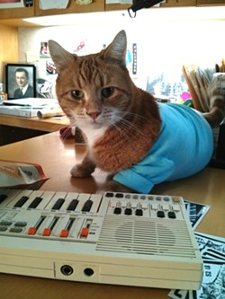 Bento the Keyboard cat is unarguably Spokane's most famous feline.