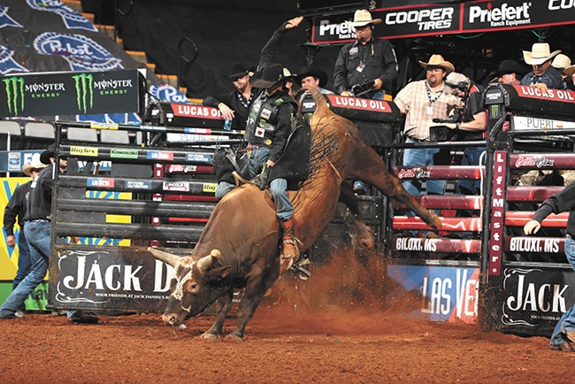 Bushwacker tossed 84 of 87 riders in under eight seconds.