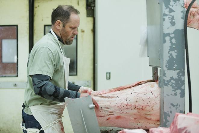 Tim Branen uses a band saw to cut through a pig. - YOUNG KWAK
